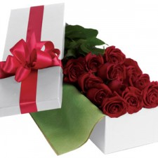 Gift Hampers - Send a Basket - petals r24 roses for you 125