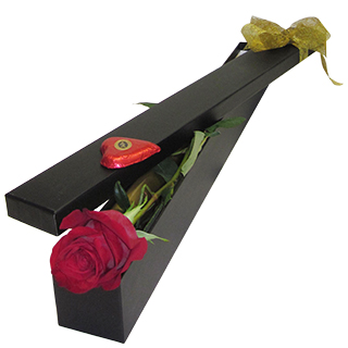 Romantic Basket - Send a Basket - p-345-single-red-rose-boxedIMG_2860-copy