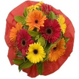 Gift Delivery - Send a Basket - p-1044-bright-delight-57-1.50-sw0_433514