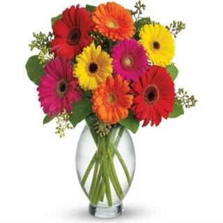 Gift Delivery - Send a Basket - p-1052-gerbera-delgiht-E1V-$77-1.50-hw0_492943