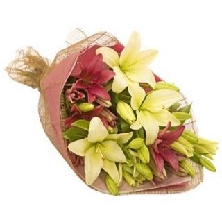Gift Package - Send a Basket - p-1060-lily-devine-B4-61.50-HW0_434159