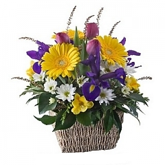 Gift Package - Send a Basket - p-405-sab-peggy