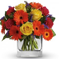 Gift Delivery - Send a Basket - petals a37 citrus splash 95
