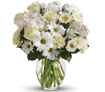 Gift Hampers - Send a Basket - petals c41v purest intentions 105