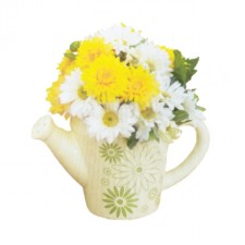 Gift Hampers - Send a Basket - flower-teapot2-Redone