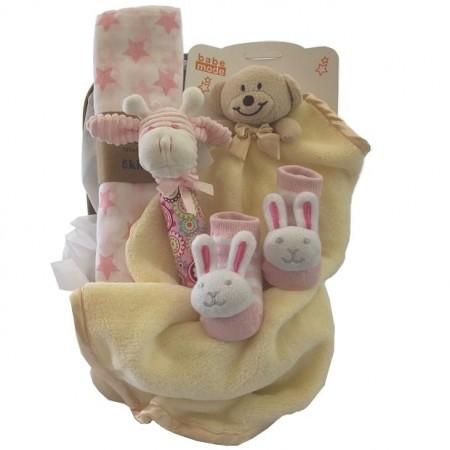 baby-basket-send-a-basket-teddy-bear-sleepy-time