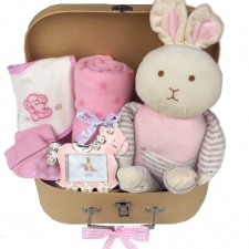 Gift Hampers - Send a Basket - baby baskets send a basket - sweet sally 99