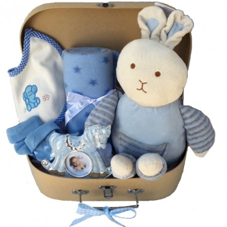 Gift Hampers - Send a Basket - baby gift baskets send a basket - sweet scottie 99