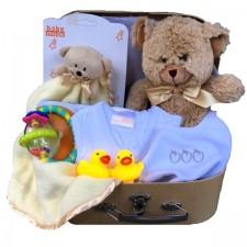 baby basket - send a basket baby charlie