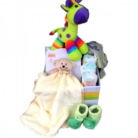 baby gift send a basket new born gift pack