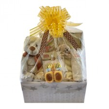 baby-basket-send-a-basket-baby-shower-gift