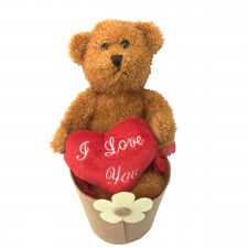 valentine-send-a-basket-little-love-bear