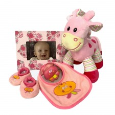 baby-gift-send-a-basket-pink-surprise